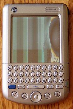 dead_palm.jpg